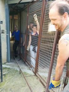 Drei Helfer tragen auf den PuFT ein Metallgitter ins Freie
